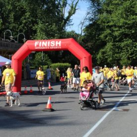 Hospice 5K and Memory Walk 2019 Photo #23